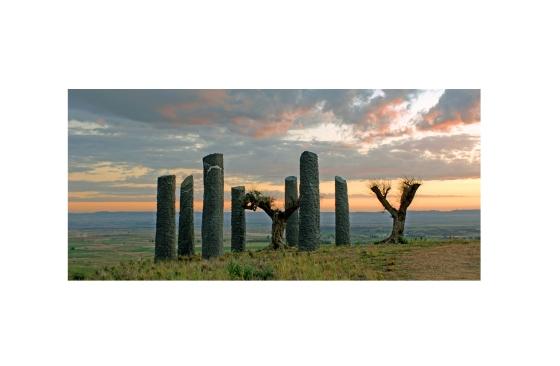 Obra en el paisaje: Fernando Casás. Árboles como arqueología, 2003