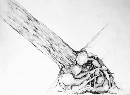El Corazón del Bosque II. Grafito sobre papel 46 x 33 cm 2003