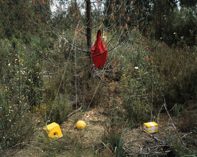 marcio_vilela-ecpa-payload after crash