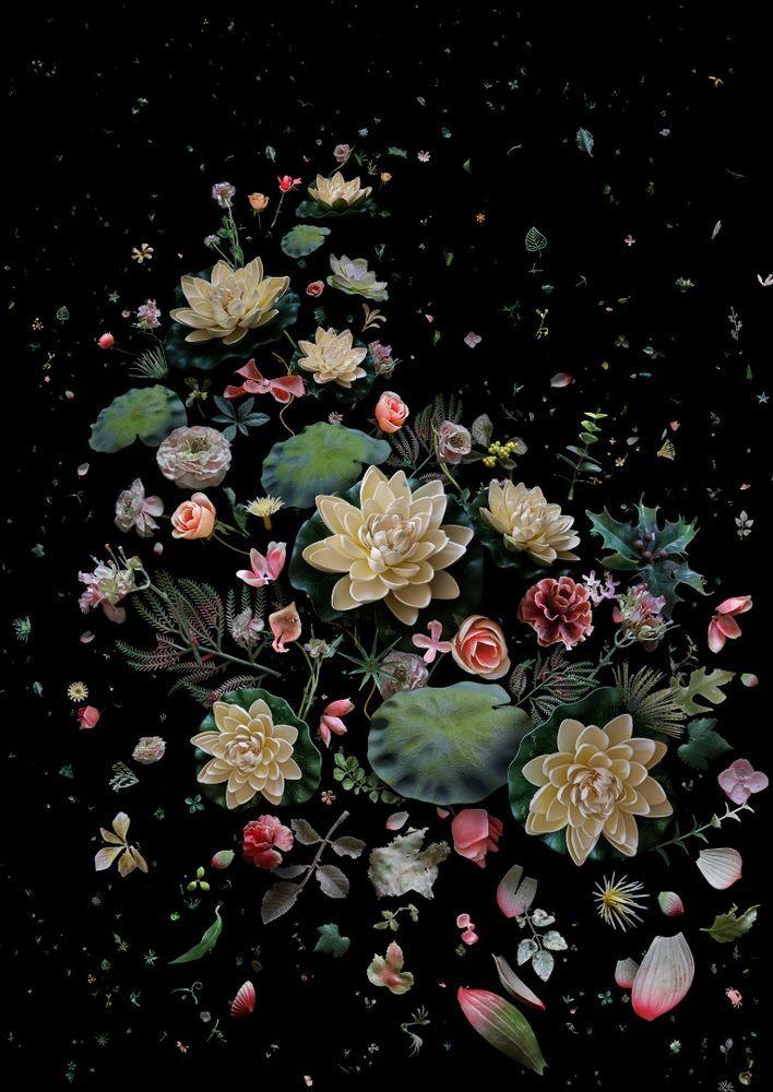 mandybarker-hongkong1826-lotus_garden